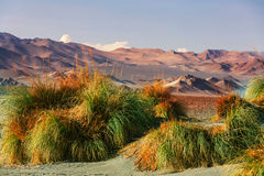 Northern Argentina. Scenic landscapes of Northern Argentina Royalty Free Stock Image