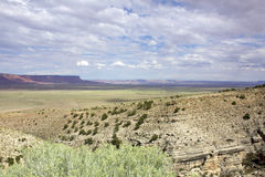Northern Arizona Desert Landscape Stock Images