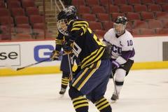 Northern Arizona University hockey Stock Photo