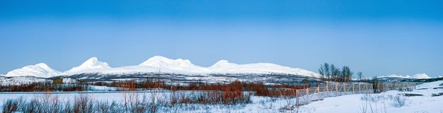 Northern beauty. Panorama. Stock Image