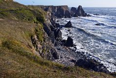 Northern California Coast. Landscape in Summer. Pacific Ocean Shore Royalty Free Stock Photos
