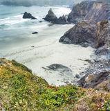 Northern California Coast. Near Eureka in spring with wild flowers Royalty Free Stock Photography