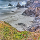 Northern California Coast. Near Eureka in spring with wild flowers Royalty Free Stock Photo
