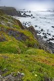 Northern California Coastline Royalty Free Stock Photos