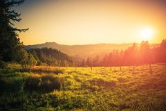 Northern California Countryside. Summer in Northern California. Eureka, California Countryside. Nature Landscape Royalty Free Stock Images
