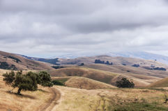 Northern California Landscape, Winter Day, Garin Regional Park, Hayward, California, USA. Alameda County East Bay winter day of rolling hills and oak trees on a Stock Image