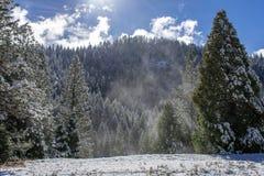Hazy winter landscape royalty free stock photography