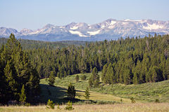 Northern Colorado Valley. A photograph across the Laramie River valley in Northern Colorado, looking to the south. About 10 miles east of Red Feather Lakes and Stock Photography