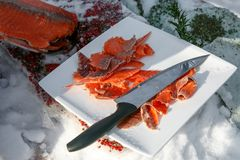 Northern cuisine, red frozen fish on plate with knife. Winter Stock Images