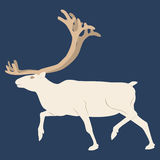 The Northern deer. Blue background Stock Photography