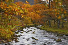 Northern Derwent Water, Keswick and Blencathra. Little bridge in Stock Photography
