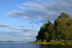 Northern forest islands in a huge lake. The beautiful picture of Karelian forest at the edge of a lake on a blue and cloudy sky background stock photo