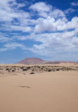 Northern Fuerteventura, Corralejo sand dunes Royalty Free Stock Images
