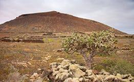 Northern Fuerteventura, Malpais de arena Stock Photography