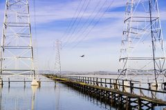 Northern harrier flying among electricity towers, Shoreline Park, Mountain View, south San Francisco bay, California stock photography