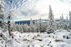Northern high mountain lake framed by coniferous forest Royalty Free Stock Photos