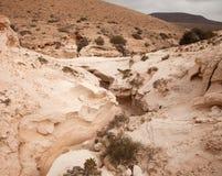 Northern Inland Fuerteventura, barranco de los enamorados stock photo