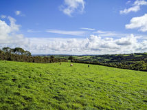 Northern Irish Countryside Royalty Free Stock Photo