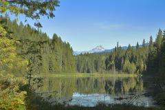 Northern lake. Royalty Free Stock Photo