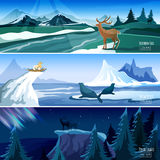 Northern Landscape Flat Banners set Stock Photo