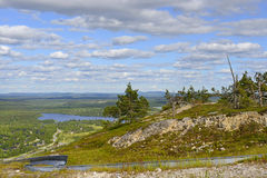 Northern landscape and Summer Sled Track Royalty Free Stock Image