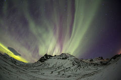 The Northern Light Aurora borealis Royalty Free Stock Images