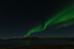 Green Northern Light in Greenland Royalty Free Stock Photos