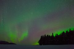 Northern light in swedish lapland Royalty Free Stock Photos