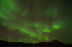 Northern Lights. The Northern Lights over the mountains Royalty Free Stock Photo