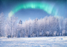 Free Northern Lights. Royalty Free Stock Photography - 48990507