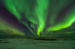 Northern lights. Above snowy land Royalty Free Stock Images