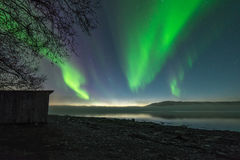 Northern lights in Alta with fog at the fjord Royalty Free Stock Images