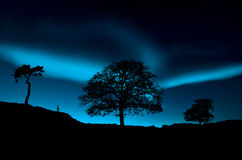 Northern lights. Amazing northern lights at night Stock Image