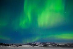 Northern Lights (Aurora borealis) royalty free stock images