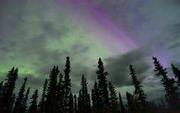 Northern Lights Aurora Borealis Alaska Night Sky Astronomy Royalty Free Stock Photography