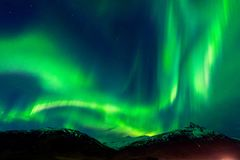 Northern lights Aurora borealis at night royalty free stock images