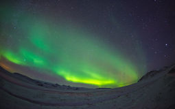 Northern Lights Aurora Borealis. At night Stock Photography