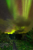 Northern lights (Aurora Borealis) over a path in the middle of the forest Stock Image