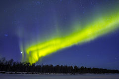 Northern Lights (Aurora borealis) over snowscape Royalty Free Stock Images