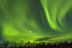Northern Lights (Aurora borealis) over snowscape Stock Photos