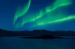 Northern Lights aurora borealis over trees Royalty Free Stock Image