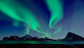Northern Lights in Norway royalty free stock images