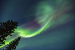 Northern lights (Aurora borealis) in the sky. Colorful Northern lights (Aurora borealis) in the sky royalty free stock images