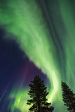 Northern lights (Aurora borealis) in the sky. Colorful Northern lights (Aurora borealis) in the sky royalty free stock image