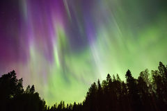 Northern lights (Aurora borealis) in the sky. Colorful Northern lights (Aurora borealis) in the sky royalty free stock photos