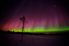 Northern lights. Beautiful Northern lights in Lapland of Finland Royalty Free Stock Photo