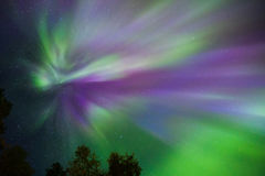 Northern lights Crown (Aurora borealis) in the sky. Colorful Northern lights Crown (Aurora borealis) in the sky royalty free stock image
