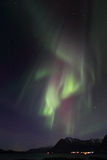 Northern Lights curtains over Nord Lofoten Royalty Free Stock Images