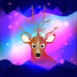 The northern lights with a deer Stock Images