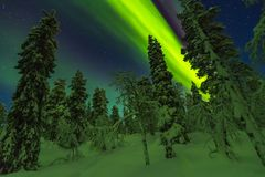 Northern lights in Finish Lapland royalty free stock images